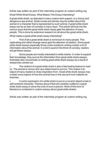 Low Cost Essay Companies